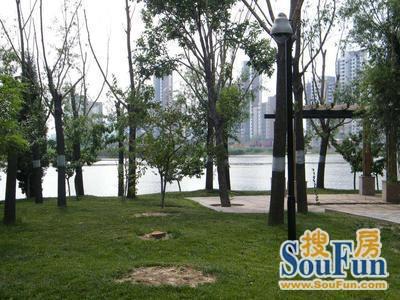富力津门湖观鹭花园外景图