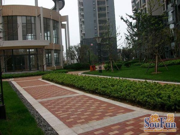 9244 商户描述:海岸风情位于青岛开发区石雀滩住宅示范区(滨海大道/唐
