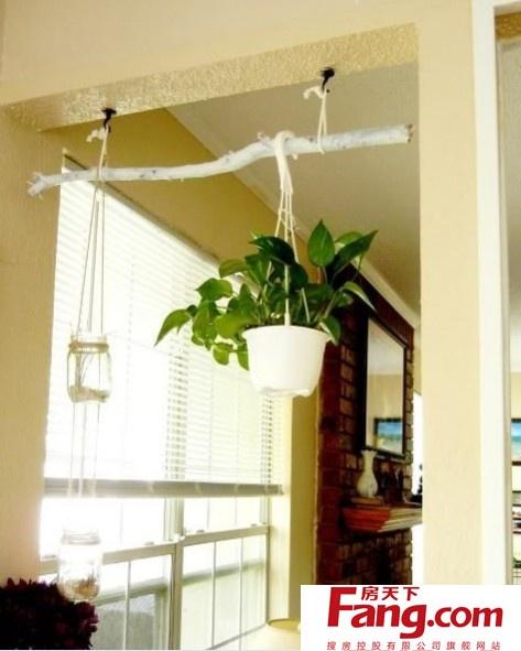 用树枝装饰新家,意想不到的好效果!