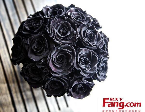 黑玫瑰图片大全 黑玫瑰花语