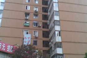 丰台方庄芳星园二区 45平米1室1厅1卫