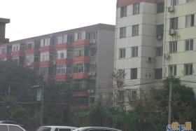 红旗家属院 4号楼4单元