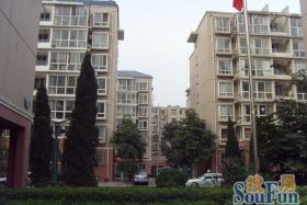 新浩城南区 1500元 2室1厅1卫 精装,家具电