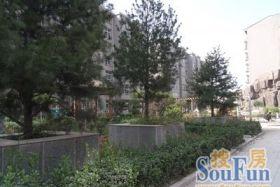 小店坞城鑫苑小区 15平米1室
