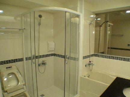 家庭设计卫生间淋浴房图