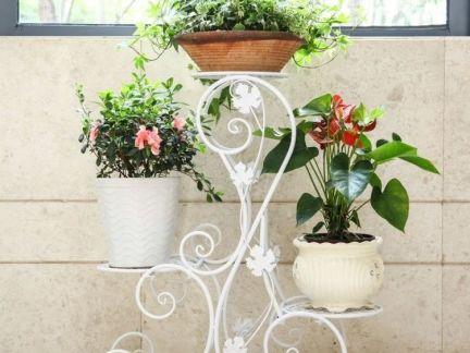 欧式铁艺花架展示图