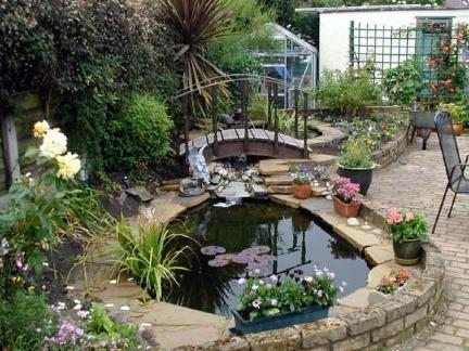 庭院鱼池设计效果图片图片