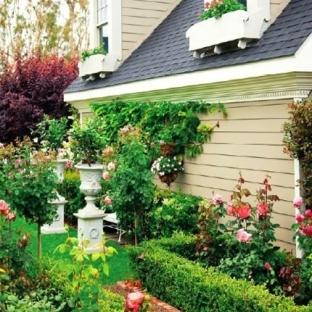 观墙效果图精致花园-景观墙效果图
