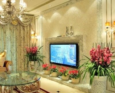 欧式华丽电视机背景墙效果图