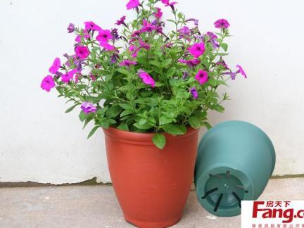 塑料自制花盆图片