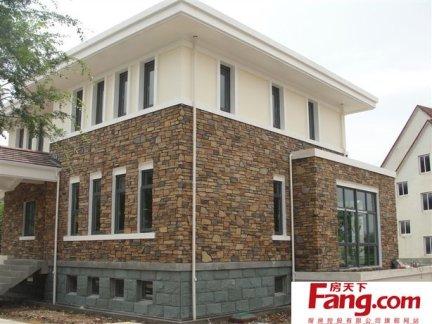 2018别墅楼房外墙瓷砖装修效果图片 房天下装修效果图