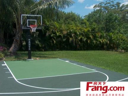 半场篮球场平面图片