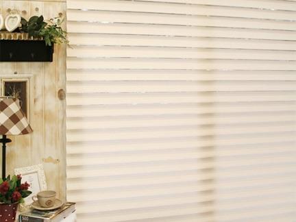 卷帘窗帘图片欣赏