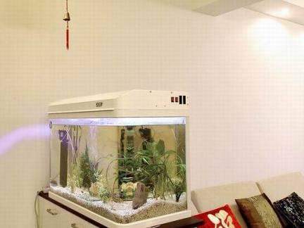 客厅隔断鱼缸造景图片