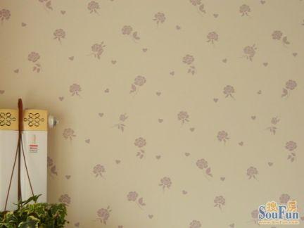 皓尔宝无机功能性内欧式花纹内墙涂料