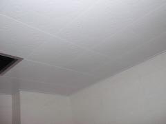 顶上集成吊顶-盛世华章-抗油污板
