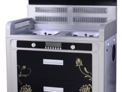 厨房电器无烟王-奥德赛集成灶