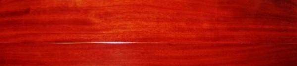 安信实木地板-圆盘豆黄色