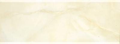 诺贝尔WF26008X墙砖内墙釉面砖