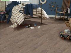 圣象强化复合地板N5019新港橡木