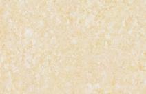 东鹏YG802903金碧辉煌抛光砖图片