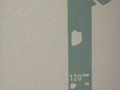 硅藻泥装修――东莞硅藻泥厂家施工,专业材料、专业施工
