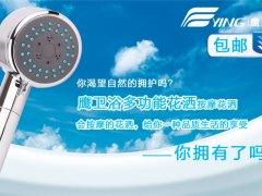 鹰卫浴 3功能按摩功能淋浴喷头手持花洒 SC-1006.03