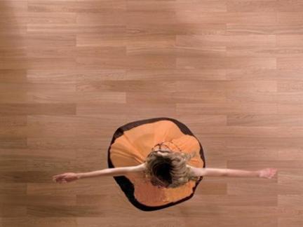 莱茵阳光rss041橡木实木复合地板