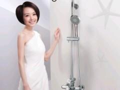 辉煌卫浴 单柄双控淋雨器