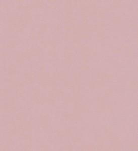 玉兰墙纸 E时代 NPP172113 简欧风格PVC墙纸