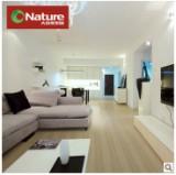 大自然 倩影白柚DSQ00强化复合木地板图片