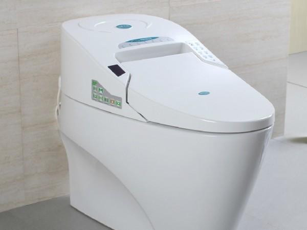 鹰陶1102智能全自动电动坐便器