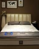 美国丝涟床垫GOLD系列--君子兰图片