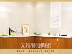 特地陶瓷/客厅/厨房/卫生间/抛光砖/璞玉石800*800