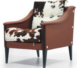 斯帝罗兰AN-S253 单椅