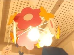 飞利浦 花朵朵吊灯 彩色 原木