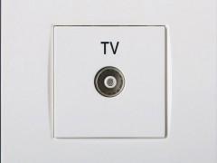 施耐德电气 AU30144-WW ABB电视插座
