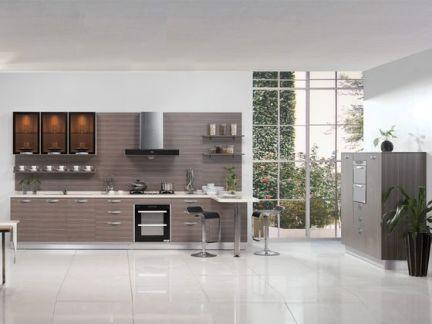 金牌厨柜整体板系列 现代款之花想容