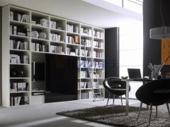 瑞沃家居SG-04 定制书柜 简约时尚书柜 定制整体书柜