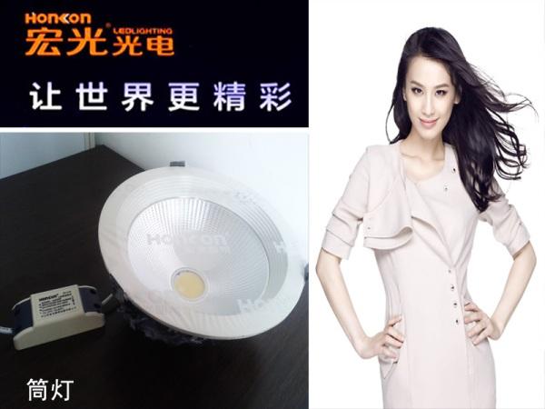 宏光光电20w 6寸压铸COB筒灯