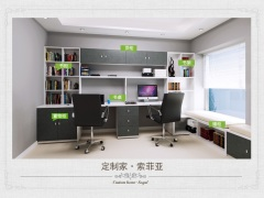 SY1603工作型书房,5星级的办公环境:书柜,榻榻米