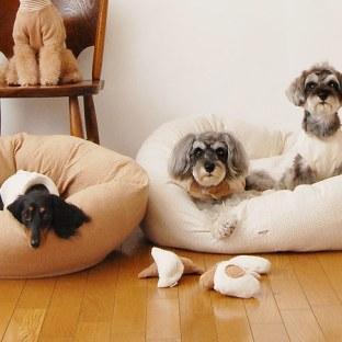 宠物家居精品大搜罗 宠物不仅陪伴主人,同时它们也会活泼可爱,充满