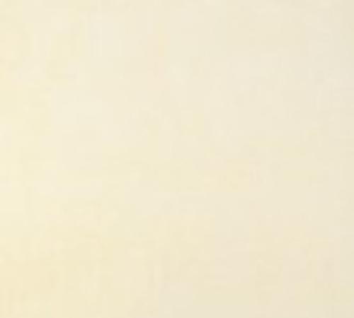 德臣娜瓷砖 R466632 地面玻化砖 自然清新风格