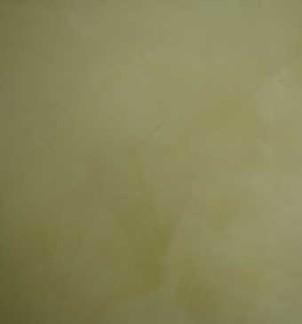 北京威洛尼马来漆