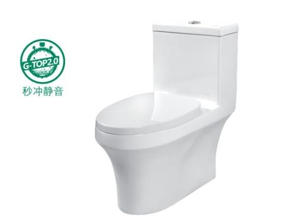 giessdorf/吉事多 乐活LOHAS 节水连体座厕 3