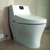 特洁尔 智能马桶 即热一体式 感应座温坐便器