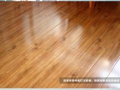 郭木材橡木3005