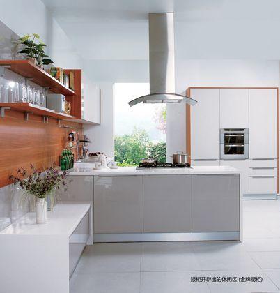 金牌厨柜烤漆系列第五大道