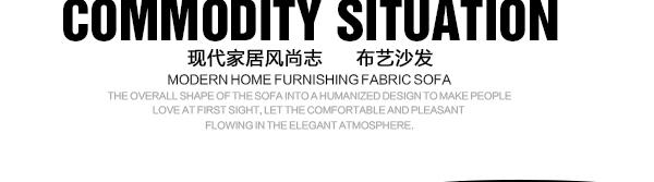 小户型布艺沙发组合 客厅家具储物沙发988 988C皮配布