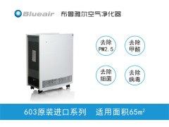 Blueair/布鲁雅尔空气净化器603